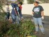 12/15/12: JVHS Honor Society Volunteers
