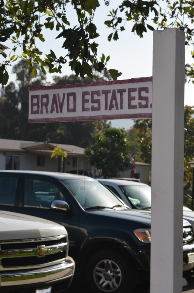 Bravo Estates Helping Hands Community Day
