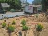 7/26/12: Home Depot Landscapes