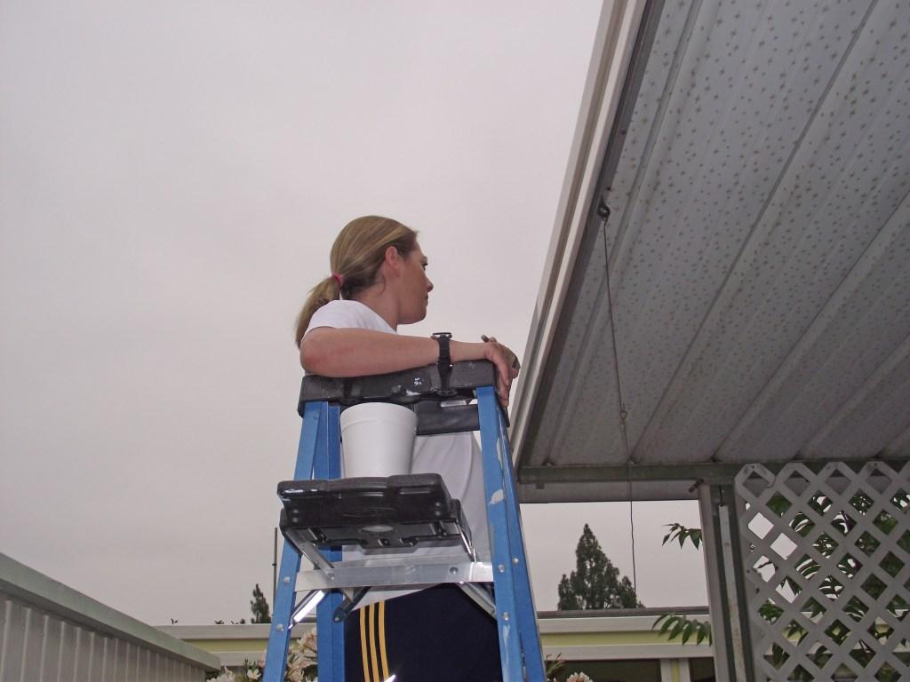 Kimberly Clark Volunteer Day