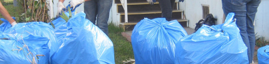 12/15/12: JVHS Honor Society Give a Helping Hand